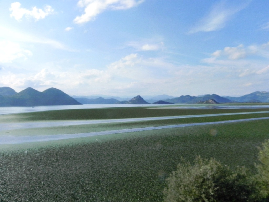 Belgrade Bar by train 3 - Lake Skadar